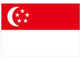 新加坡服务器|新加坡服务器租用|海外服务器租用