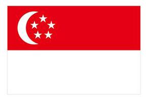 SGserver新加坡服务器租用